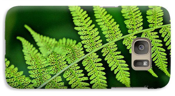 Galaxy Case featuring the photograph Fern Seed by Sharon Elliott