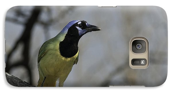 Galaxy Case featuring the photograph Green Jay by Betty Depee