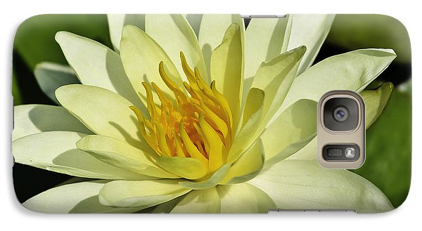 Galaxy Case featuring the photograph Nymphaea  by Perla Copernik