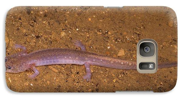 Ozark Blind Cave Salamander Galaxy S7 Case