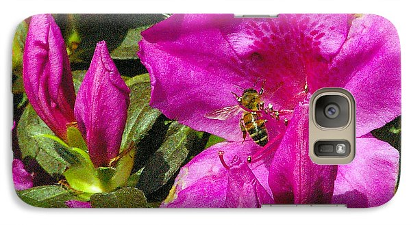 Galaxy Case featuring the photograph Pollinating  by Brian Wright
