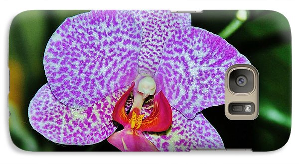 Galaxy Case featuring the photograph Purple Orchid by Sherman Perry
