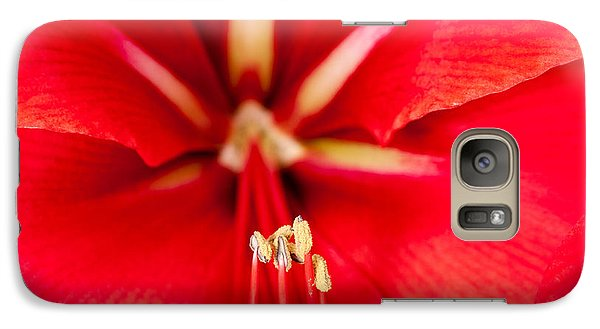 Galaxy Case featuring the photograph Red Amaryliss by Les Palenik