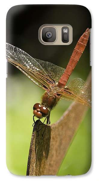 Galaxy Case featuring the photograph Red Dragonfly by Betty Depee