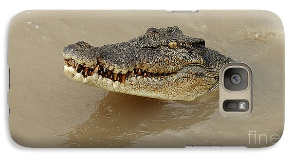 Salt Water Crocodile 3 Galaxy Case by Bob Christopher
