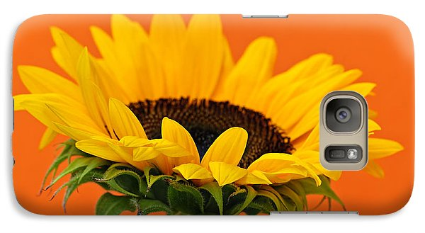 Sunflower Galaxy S7 Case - Sunflower Closeup by Elena Elisseeva