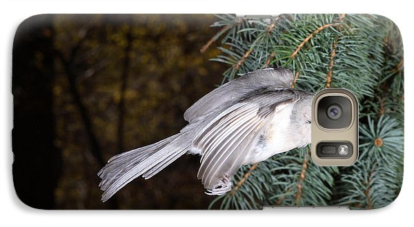 Tufted Titmouse In Flight Galaxy S7 Case by Ted Kinsman
