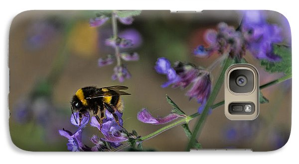 Galaxy Case featuring the photograph Bee by David Gleeson