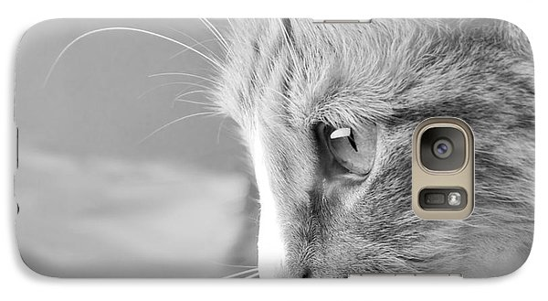 Galaxy Case featuring the photograph Flitwick The Cat by Jeannette Hunt
