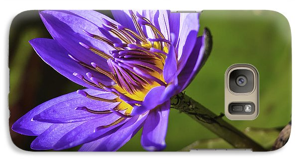 Galaxy Case featuring the photograph Nymphaea 'panama Pacific' by Perla Copernik