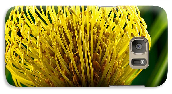 Galaxy Case featuring the photograph Picture Of A Pincushion Protea by Perla Copernik