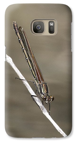 Galaxy Case featuring the photograph Red Bluet by Betty Depee