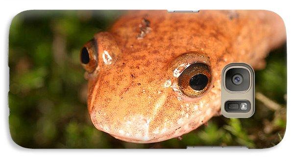 Spring Salamander Galaxy Case by Ted Kinsman