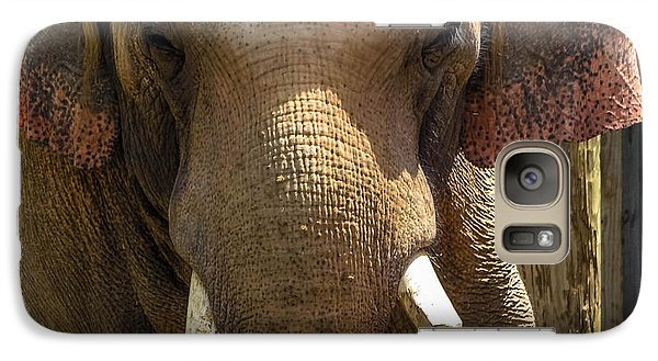 Galaxy Case featuring the photograph Asian Elephant by Brian Stevens