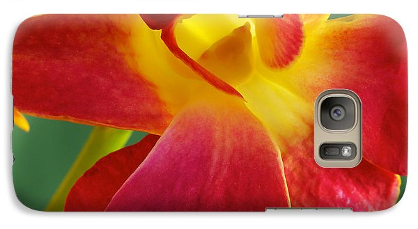 Galaxy Case featuring the photograph Dendribium Malone Or Hope Orchid Flower by Perla Copernik