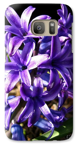 Galaxy Case featuring the photograph Hyacinth Named Peter Stuyvesant by J McCombie