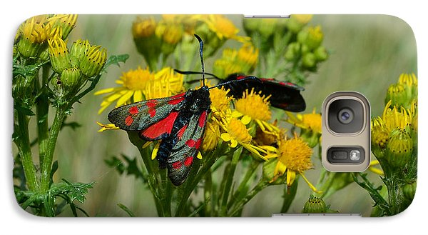 Galaxy Case featuring the photograph 6 Spot Burnet by Barbara Walsh