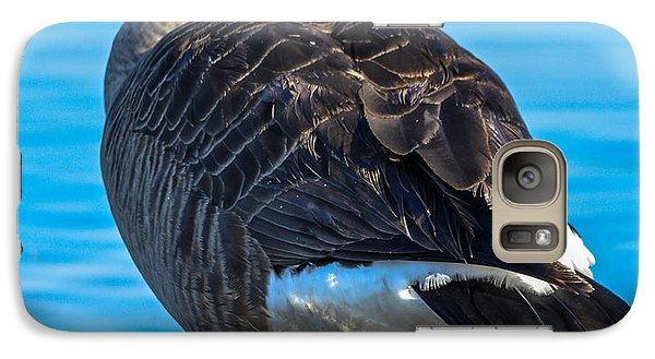 Galaxy Case featuring the photograph Canadian Goose by Brian Stevens