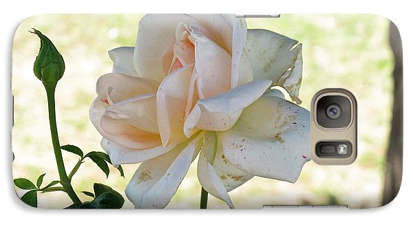 Galaxy Case featuring the photograph A Beautiful White And Light Pink Rose Along With A Bud by Ashish Agarwal