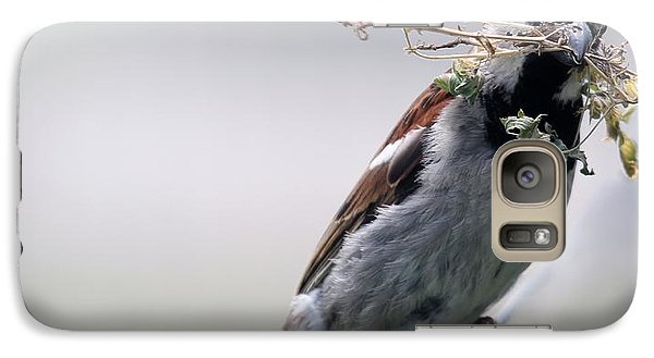 Galaxy Case featuring the photograph A Bird And A Twig by Elizabeth Winter