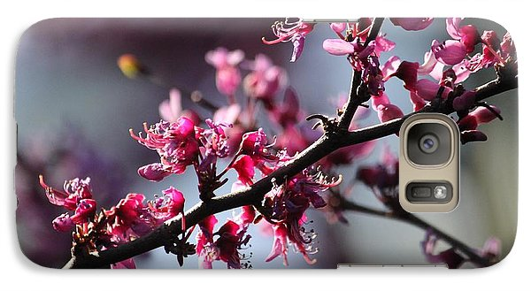 Galaxy Case featuring the photograph A Hint Of Spring  by Amy Gallagher