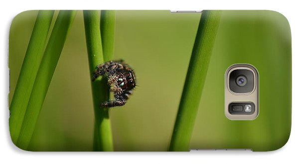 Galaxy Case featuring the photograph A Jumper In The Grass by JD Grimes