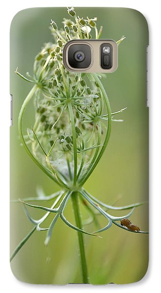 Galaxy Case featuring the photograph A Meal Of Lace by JD Grimes