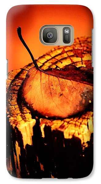 Galaxy Case featuring the photograph A Pose For Fall by Jessica Shelton