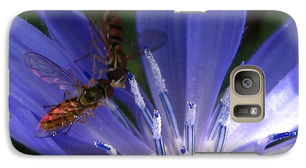 Galaxy Case featuring the photograph A Quiet Moment On The Chicory by J McCombie