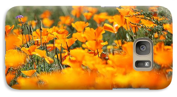 Galaxy Case featuring the photograph A River Of Poppies  by Amy Gallagher