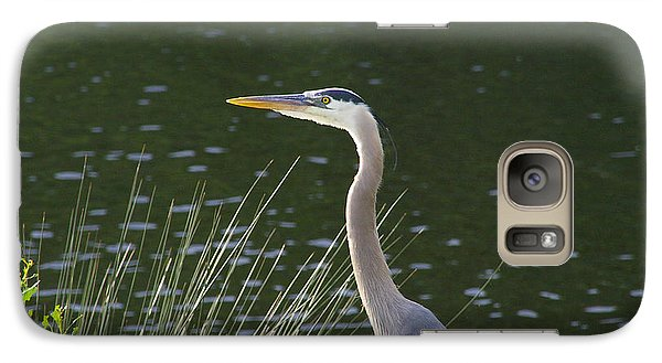 Galaxy Case featuring the photograph Adult Great Blue Heron by Brian Wright