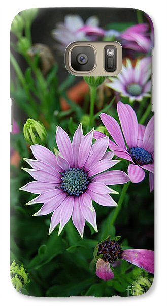 Galaxy Case featuring the photograph African Daisy by Eva Kaufman