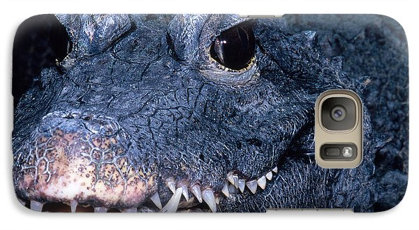 African Dwarf Crocodile Galaxy Case by Dante Fenolio