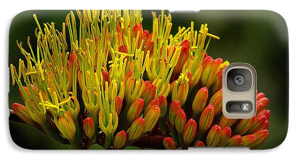 Galaxy Case featuring the photograph Agave Bloom by Vicki Pelham