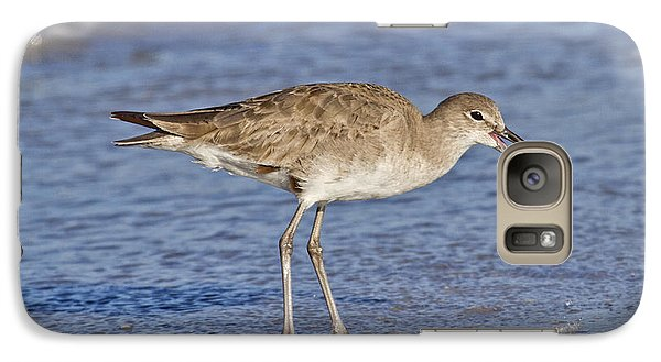 Sandpiper Galaxy S7 Case - All In A Day by Betsy Knapp
