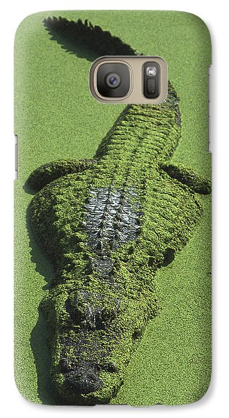 American Alligator Alligator Galaxy S7 Case by Heidi & Hans-Juergen Koch
