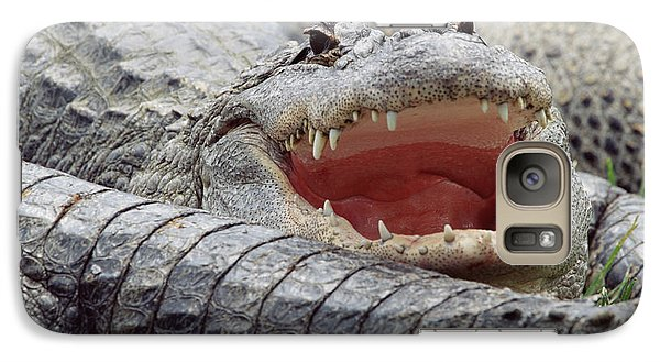 American Alligator Alligator Galaxy S7 Case by Tim Fitzharris