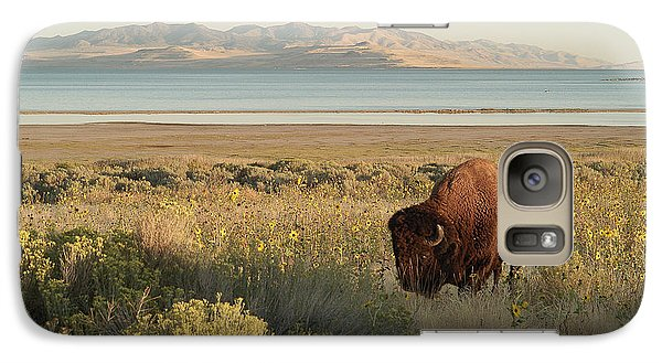 Galaxy Case featuring the photograph American Bison Antelope Island Utah by Doug Herr