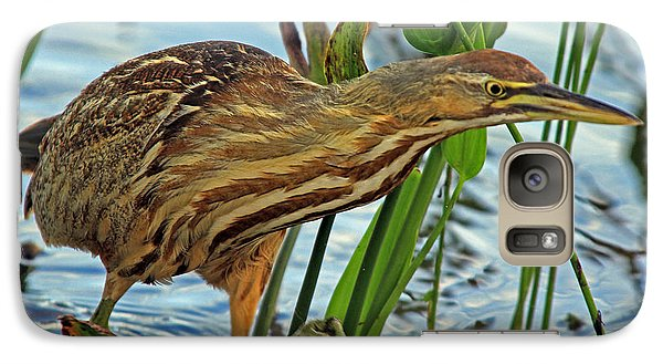 Galaxy Case featuring the photograph American Bittern by Larry Nieland