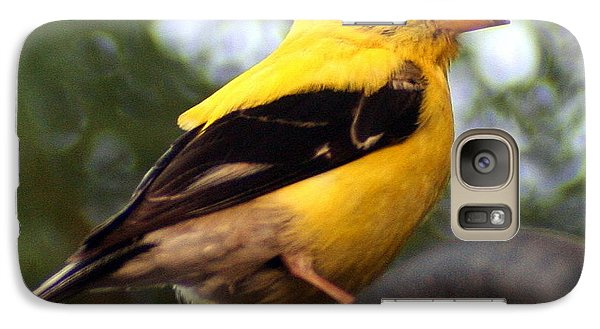 Galaxy Case featuring the photograph American Goldfinch by Laurel Talabere