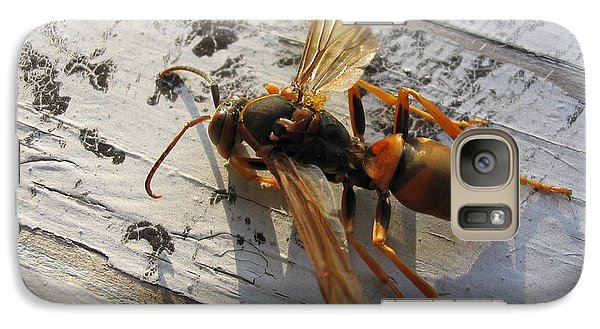Galaxy Case featuring the photograph Apache Red Wasp by Mark Robbins
