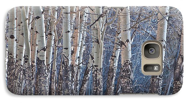 Galaxy Case featuring the photograph Aspen Grove by Colleen Coccia