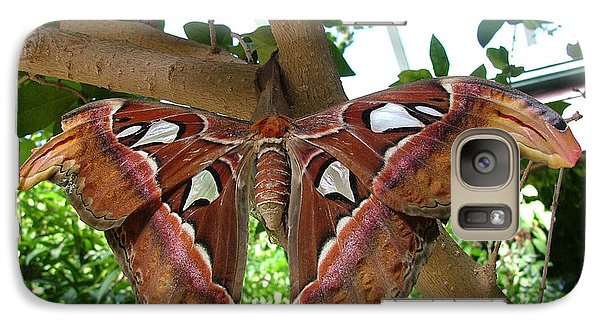 Galaxy Case featuring the photograph Atlas Moth by Wendy McKennon
