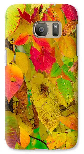 Galaxy Case featuring the photograph Autumn by Brian Stevens
