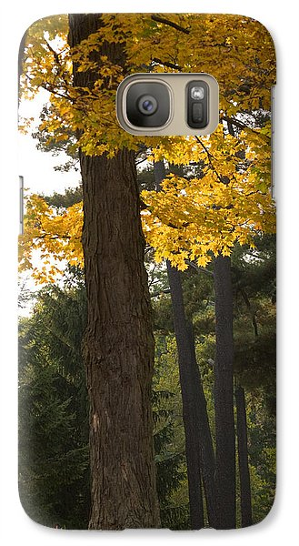 Galaxy Case featuring the photograph Autumn Leaves by Darleen Stry