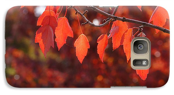 Galaxy Case featuring the photograph Autumn Leaves In Medford by Mick Anderson