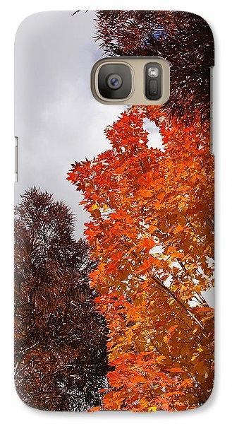 Galaxy Case featuring the photograph Autumn Looking Up by Mick Anderson
