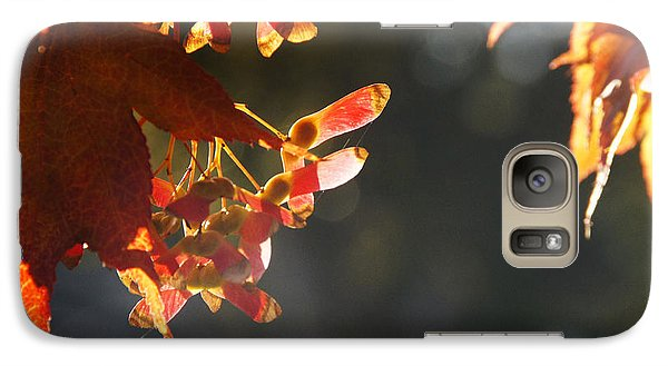 Galaxy Case featuring the photograph Autumn Maple by Mick Anderson