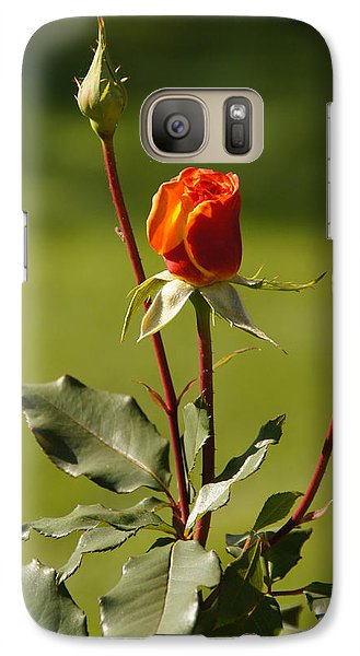 Galaxy Case featuring the photograph Autumn Rose by Mick Anderson