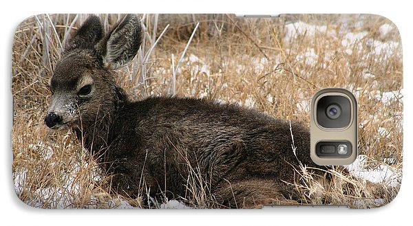 Galaxy Case featuring the photograph Baby Deer At Rest by Nola Lee Kelsey